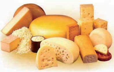 El queso de Mocorito: patrimonio regional