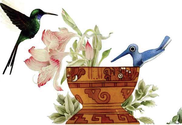 A la izquierda del colibrí