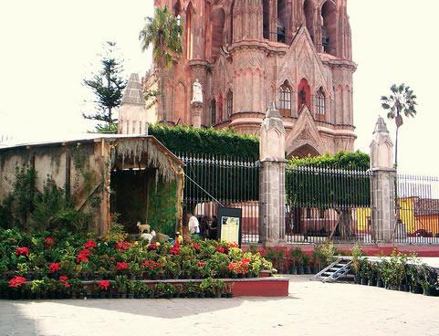In Cuetlaxochitl símbolo universal nacido en México