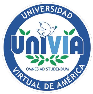 La educación virtual o en línea