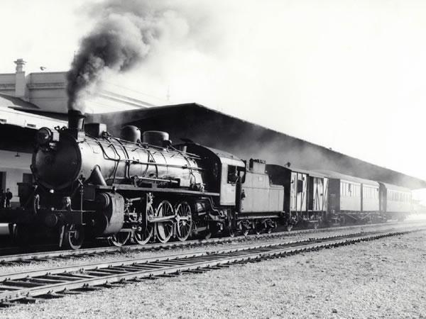 El tren de la Uvalama