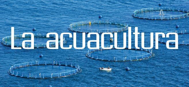 La acuacultura