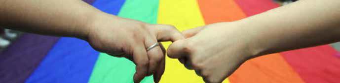 Matrimonio igualitario: la singularidad de lo diverso
