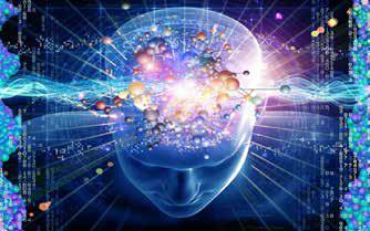 El cerebro, un performativo de la cultura