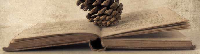 Talonear la lectura